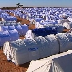 Disaster Tents Suppliers & Exporters